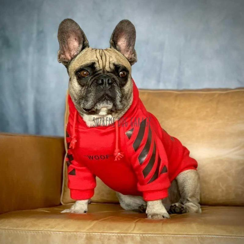 """WOOF"" Red Hype Dog Hoodie"