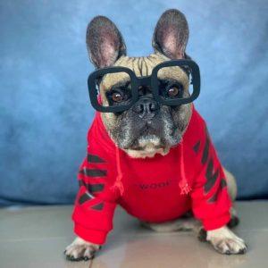 """WOOF"" Red Hype Dog Hoodie"