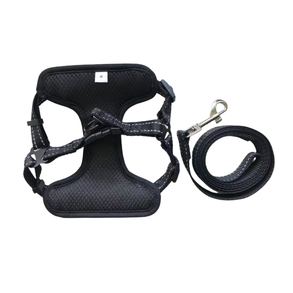 Pawtton Love Step In Dog Harness And Leash Set