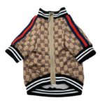 gucci jacket for dogs