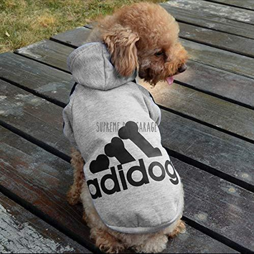 adidog clothes for dogs