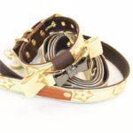 designer dog collar louis vuitton with bow tie