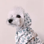 lv dog clothes