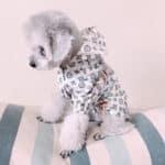 lv dog clothing