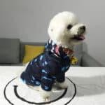bape dog hoodie
