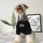 hypebeast dog hoodie