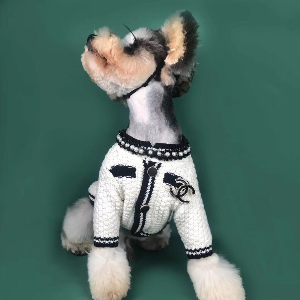 chanel dog clothes
