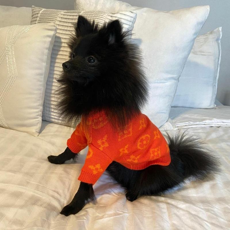 lv dog sweater