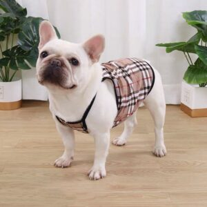 cute dog vest