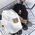 designer puppy clothes