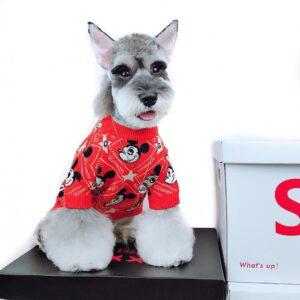 disney dog sweater