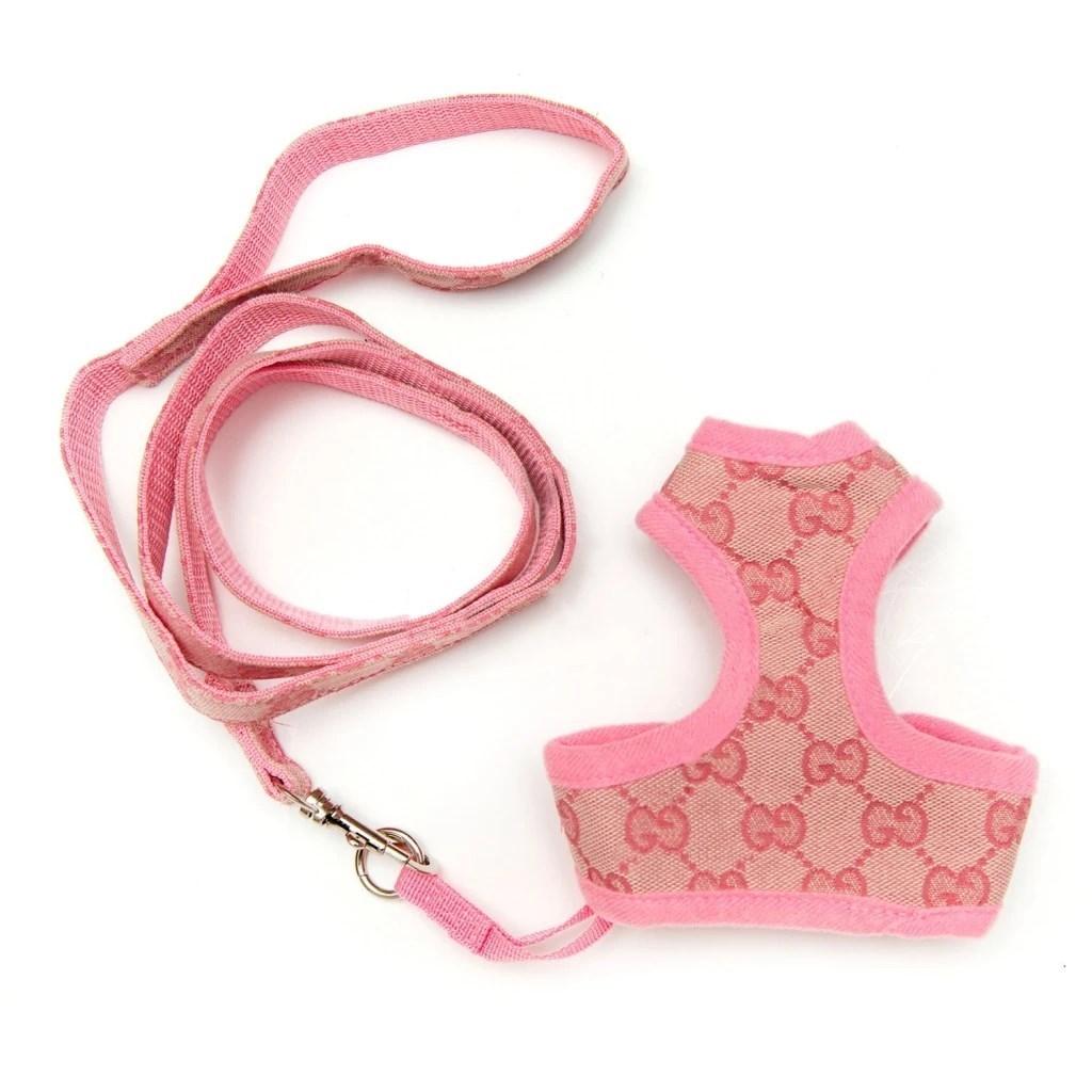 gucci dog harness and leash set