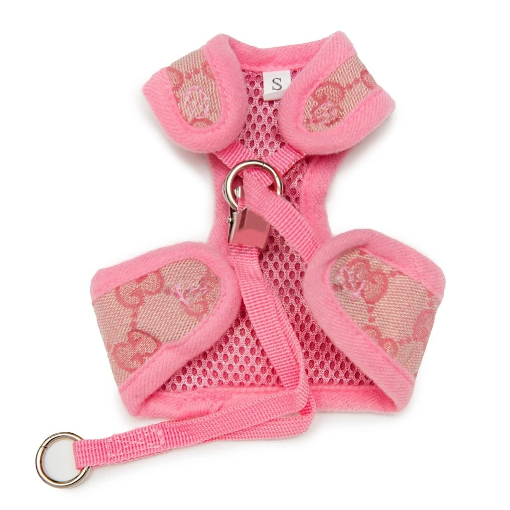cute dog harness gucci