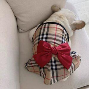 girl dog dress