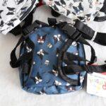 mini dog backpack