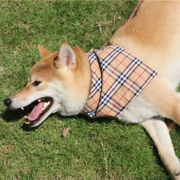 plaid bandana for dogs