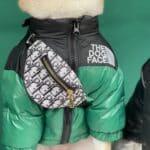 handbag for dogs