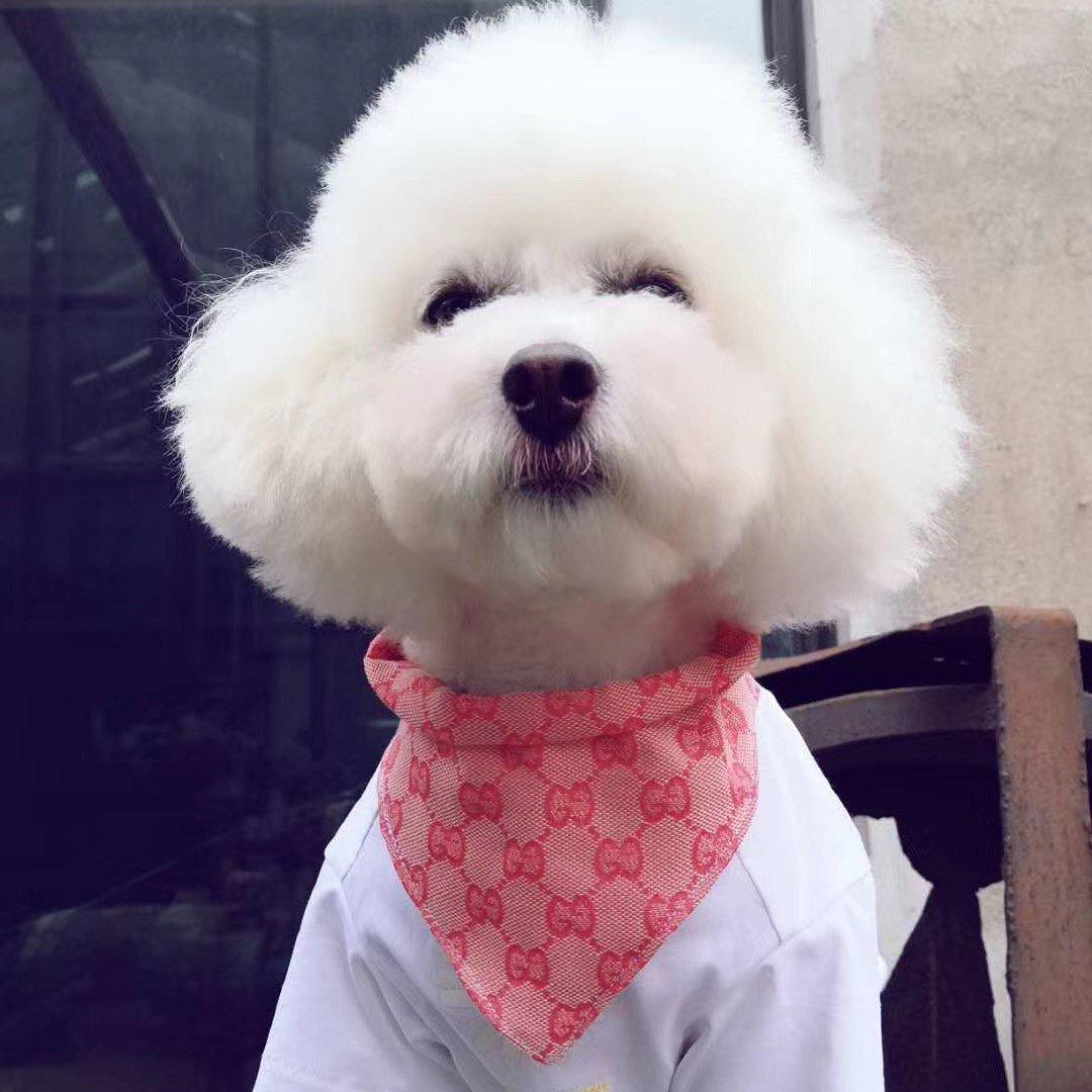 gucci bandana for dogs