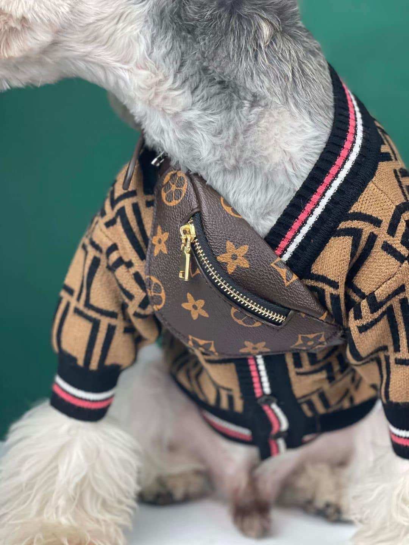 designer dog bag